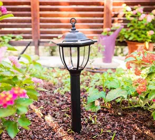 Hur tar man hand om solens trädgårdsljus?